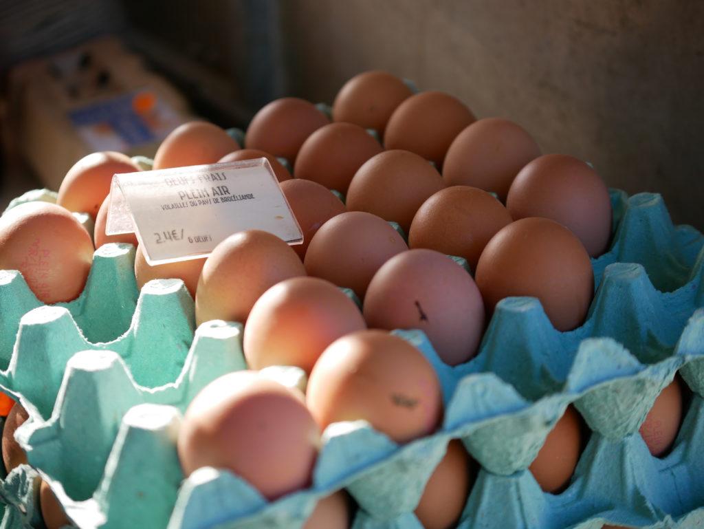 Les œufs frais du local à fromages
